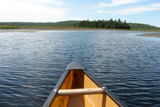 Algonquin Canoe 2010