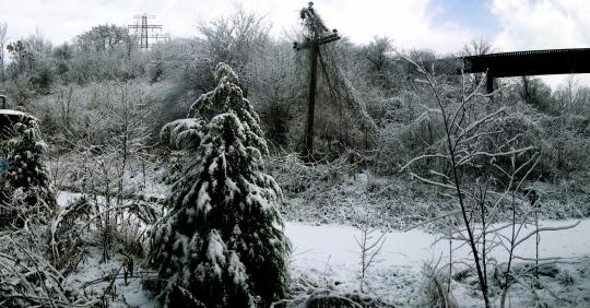 First Snow A