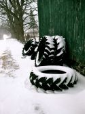 Tires By The Green Shed