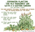 Companion Planting:1