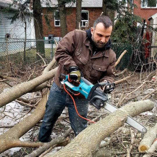 Clean Up Fallen Trees1 - Toronto Ice Storm