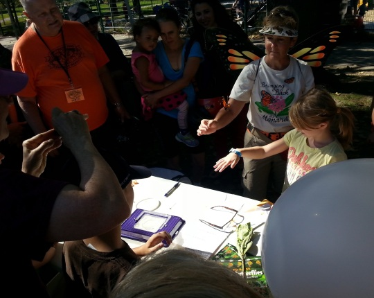 Releasing the Monarch At Withrow Park